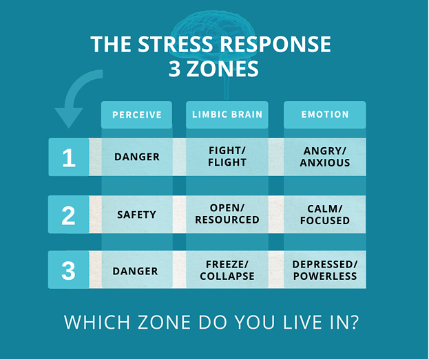 FB-post-THE STRESS RESPONSE  3 ZONES