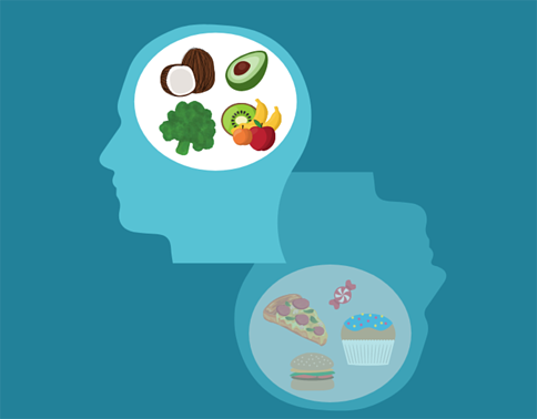what-are-the-best-foods-for-the-brain-infographic