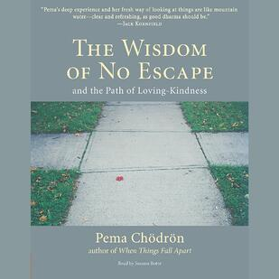 The Wisdom of No Escape by pema chodron is a classic meditation book