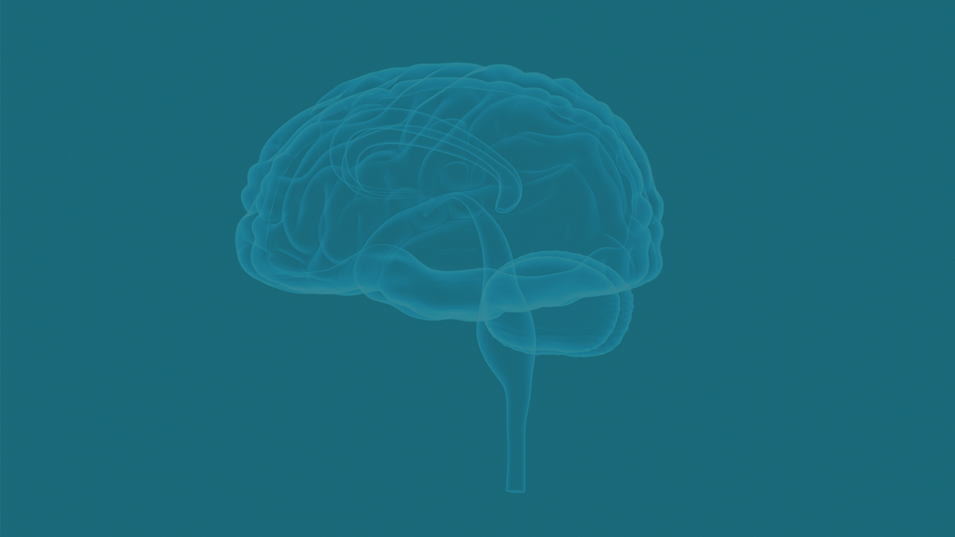 neurofeedback-training-co-logo-banner.png