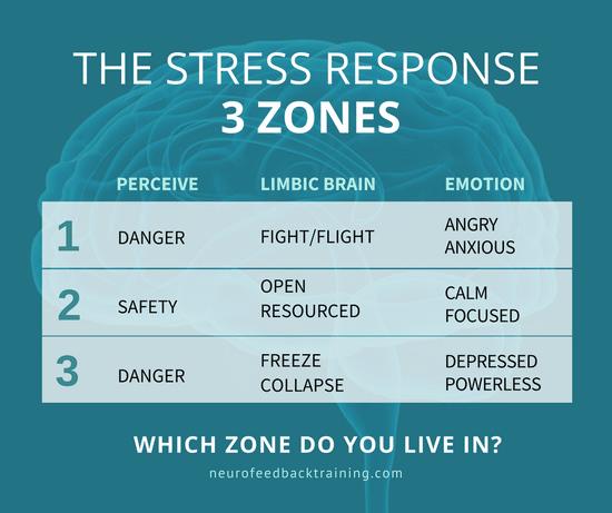 THE STRESS RESPONSE - 3 zones-fight-flight