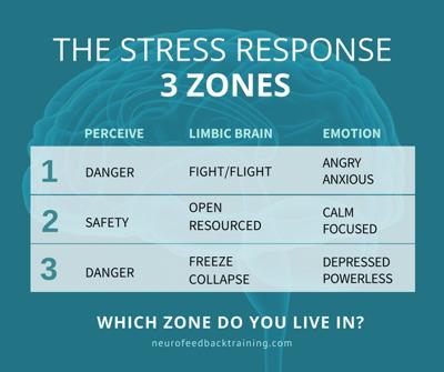 the stress response three zones