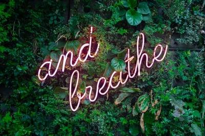 mindfulness-breathing-max-van-den-oetelaar-646474-unsplash-198261-edited