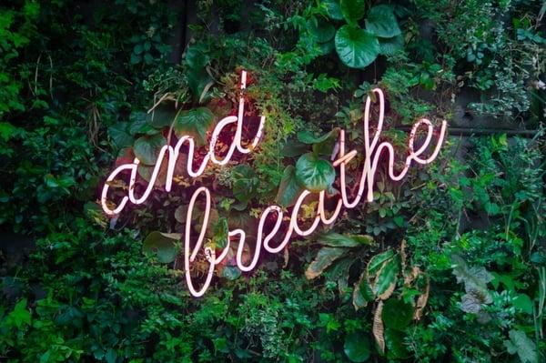 create-calm-mindfulness-in-pregnancy-article-photo
