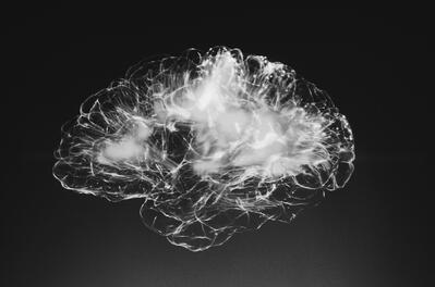 brain black and white image