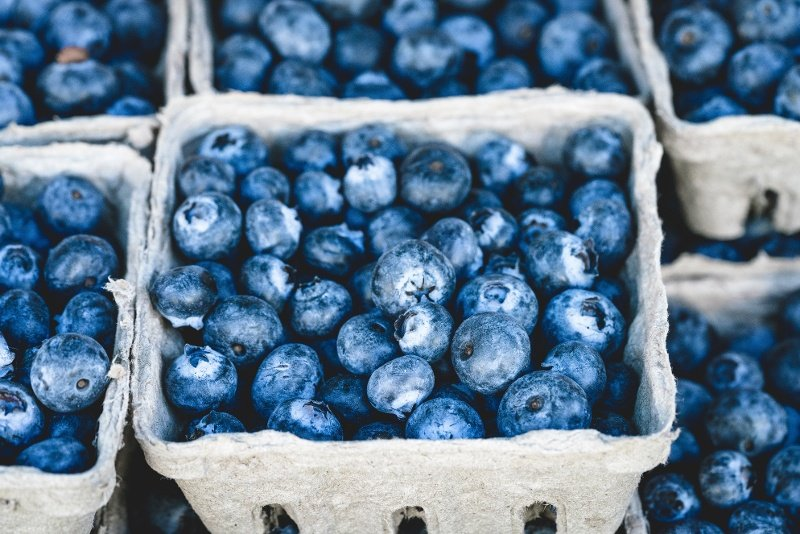 fruits-such-as-blueberries-is-a-good-brain-food