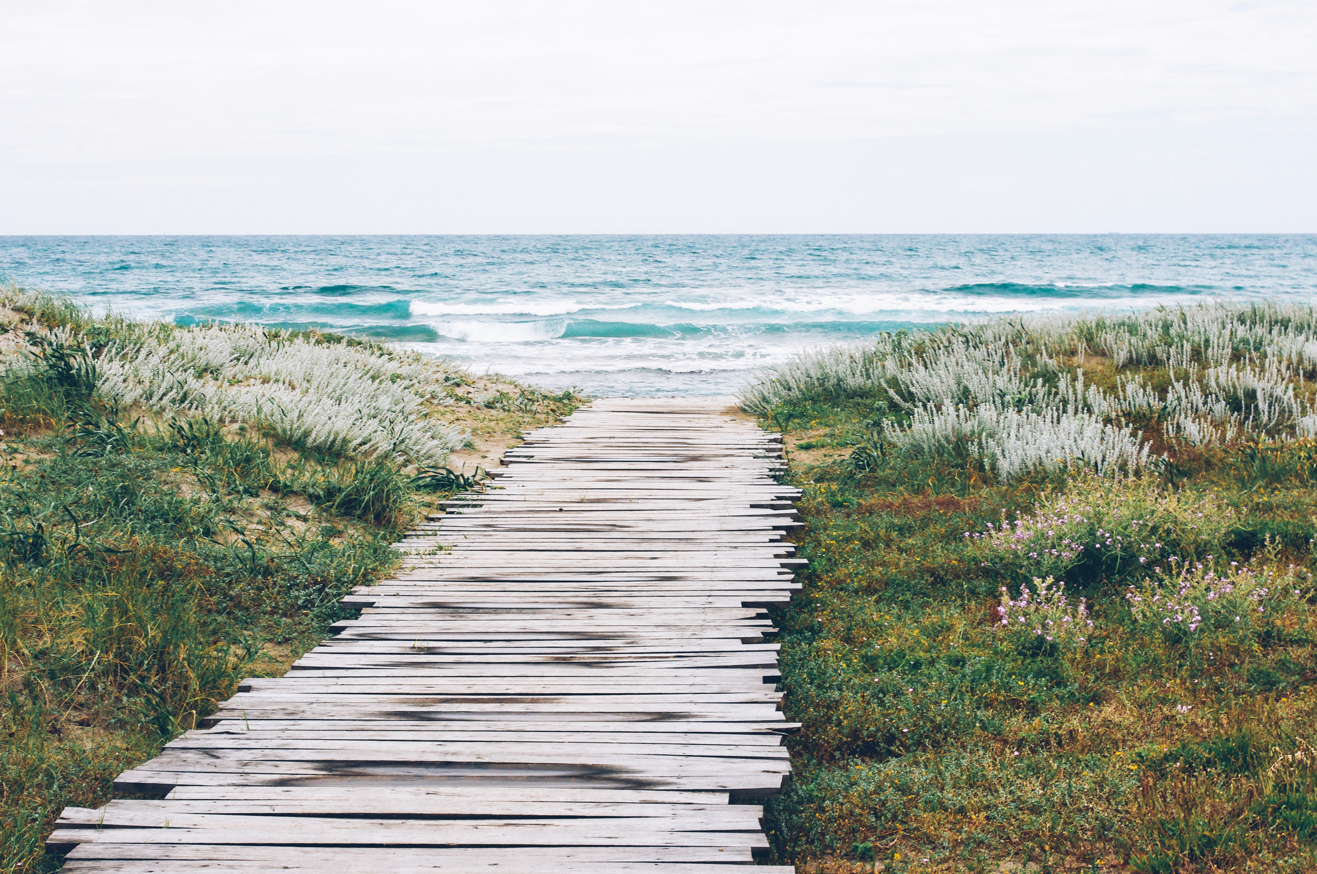 nature-therapy-beach