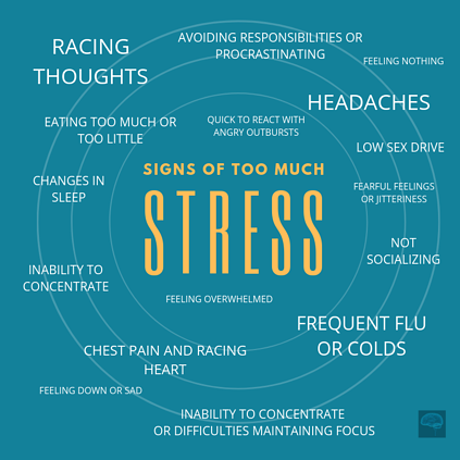 signs of too much stress knowledge